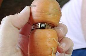 Đánh rơi nhẫn kim cương khi làm vườn, 13 năm sau người phụ nữ nhận được