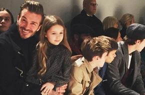 Harper xinh xắn cùng bố và các anh trai