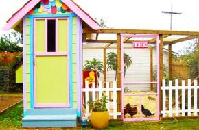 Những ngôi nhà nhỏ xinh đẹp như khách sạn dành cho… gà vịt