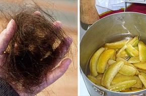 Tóc rụng gần hói cũng sẽ mọc lại đen đầu chỉ nhờ vào 1 trái này