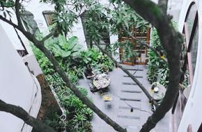 5 quán cafe vừa chất, vừa đẹp 'ẩn' mình trong những ngôi biệt thự cổ ở Hà Nội