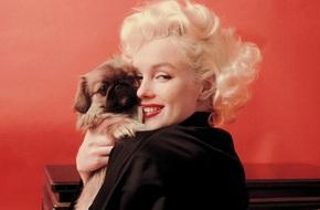 8 điều bí mật tạo nên gương mặt huyền thoại mang tên Marilyn Monroe