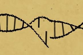 Đột phá lớn: Các nhà khoa học chỉnh sửa được gen trong phôi thai