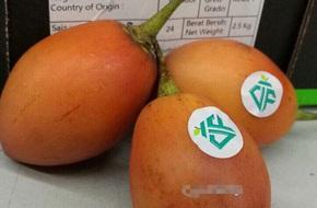 Cà chua lại 1 triệu đồng/kg: Hàng hiếm xôn xao Hà Thành