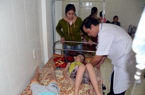 Lại thêm 37 học sinh ở Nghệ An bị ngộ độc do ăn quả ngô đồng