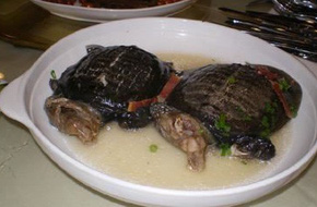 Rùng mình với súp rùa sống - món ăn kinh dị và tàn nhẫn