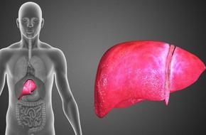 Ung thư gan phát triển trong lặng lẽ, khi có dấu hiệu này là gan đang