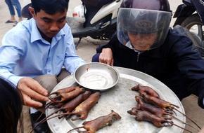 'Đột kích' nơi phụ nữ, trẻ nhỏ thích ăn thịt chuột hơn thịt gà giữa Hà Nội