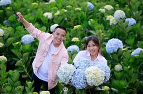 MC Hoàng Linh hạnh phúc như cô gái lần đầu biết yêu trong bộ ảnh cưới tại vườn cẩm tú cầu Đà Lạt