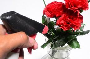 Mẹo hay làm sạch hoa lụa siêu dễ dàng, giúp căn nhà trở nên tươi mới trong tích tắc