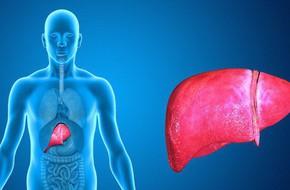 Đây là 6 bộ phận trên cơ thể dễ mắc ung thư nhất mà bạn không nên xem thường