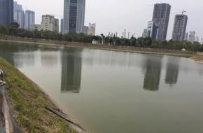 Hà Nội: Một người phụ nữ trượt chân tử vong khi đi thả cá chép