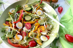 Giảm cân hiệu quả, làm đẹp làn da với món salad tổng hợp siêu ngon