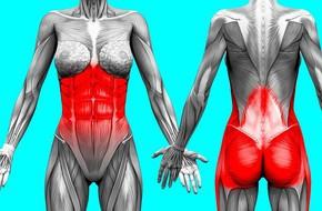 Kế hoạch tập thể dục 3 ngày để loại bỏ chất béo bụng và chuyển đổi cơ thể của bạn