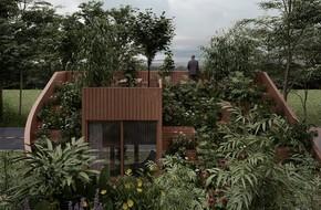 Cặp vợ chồng già sở hữu một vườn rau lớn trên mái nhà khiến khách nào đến chơi cũng trầm trồ