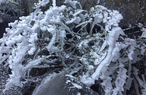 Chùm ảnh: Không khí lạnh tràn về, Sa Pa rét -2 độ C, nhiều nơi phủ trắng tuyết