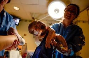 Bức ảnh khoảnh khắc em bé sơ sinh cất tiếng khóc chào đời đẹp  hiếm thấy, sự thật phía sau đó còn khiến các mẹ 'tâm phục khẩu phục' hơn nữa