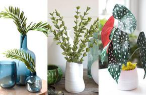3 cách làm bình lá trang trí nhà sắc xanh thật đẹp