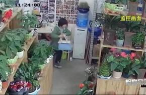 Cho băng đảng trộm cắp