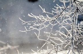 Thời tiết lạnh giá, người dân Nhật Bản háo hức chiêm ngưỡng khung cảnh 'bụi kim cương' đẹp như trong cổ tích