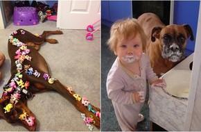 Để mặc trẻ chơi với thú cưng, bố mẹ sẽ được trận cười ngả nghiêng khi thấy