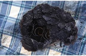 Bé gái 7 tuổi suýt bị thiêu sống vì chăn điện bốc cháy