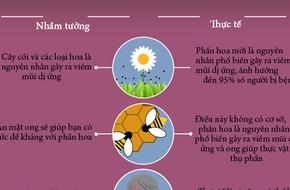 Infographic: Nắm rõ những điều sau đây để không bao giờ bị viêm mũi dị ứng khi giao mùa