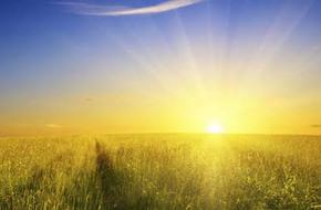 Mẹ là ánh mặt trời