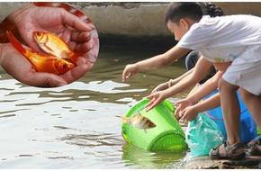 Trẻ em TP.HCM nô nức thả cá tiễn Táo quân, Hà Nội xuất hiện