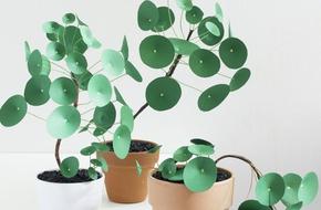 Làm chậu cây xanh không bao giờ tàn trang trí nhà đẹp lạ