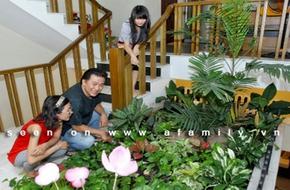 Ngôi nhà đầy tiếng chim của NSƯT Tạ Minh Tâm