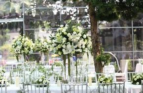Cặp đôi ở Hà Nội khiến khách mời
