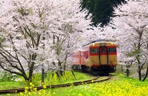 Nắm được 11 điều này, chuyến du lịch Nhật Bản chắc chắn sẽ thành công tốt đẹp