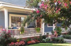 Những thiết kế sân vườn trước cửa siêu đẹp cho nhà nhỏ thêm xinh