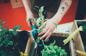 """Bộ 3 dụng cụ làm vườn các """"nông dân nhà phố"""" không thể bỏ lỡ"""