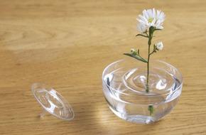 Mê mẩn với 25 mẫu bình cắm hoa độc đáo, lạ mắt