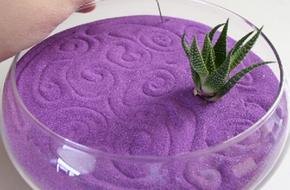 Cách trồng cây với cát màu trang trí nhà ấn tượng