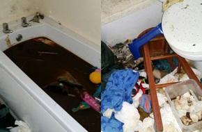 Kinh hoàng chuyện dùng bồn tắm làm toilet tại căn nhà bẩn nhất thế giới