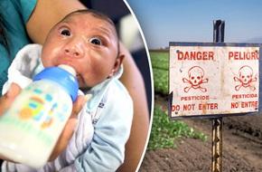 Bộ Y tế xác nhận em bé VN đầu tiên mắc chứng đầu nhỏ do virus Zika