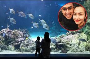 Tăng Thanh Hà sang Úc du lịch cùng chồng con giữa nghi vấn mang bầu lần 2