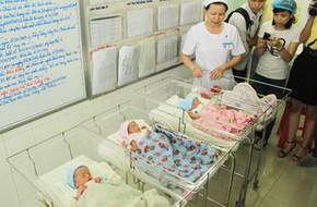 Cần tới 15 người để ủ ấm cho các bé sinh 5