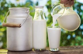Lợi ích và những rủi ro khi uống sữa tươi thô