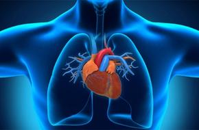 Thực phẩm giàu chất xơ giúp người mắc bệnh tim sống lâu hơn