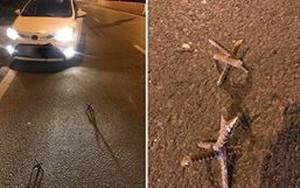 Quảng Ninh: Nhiều xe ô tô bất ngờ bị dính đinh to nặng tới 1kg trên quốc lộ 18