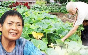 Vườn rau rộng tới 8000m² giữa thủ đô nước Mỹ của người phụ nữ Việt