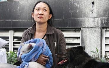 Sau 16 tiếng xảy ra vụ cháy chung cư: Người lỉnh kỉnh đồ đạc bỏ đi, kẻ vạ vật ôm chó, mèo ngồi lại đợi vào nhà coi tài sản