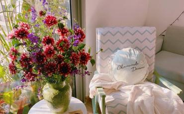 Căn hộ được trang trí đón Tết khéo léo, góc nào cũng đẹp ấm cúng và bình yên ở Hà Nội