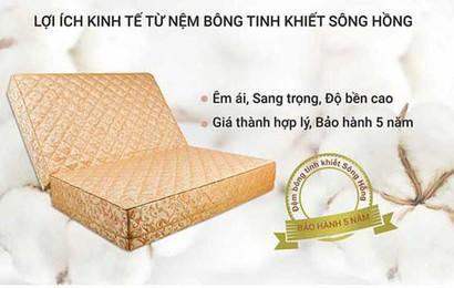 Đệmbông épSông Hồng siêu nảy- Lựa chọn hàng đầu của người tiêu dùng Việt