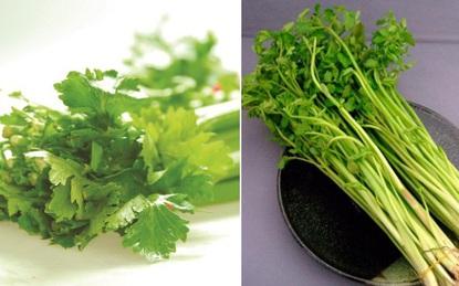 Tác dụng chữa bệnh từ hai loại rau quen thuộc bếp nhà nào cũng có vào dịp Tết