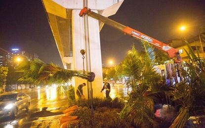 Hà Nội: Bất chấp đêm tối, trời mưa, hàng chục công nhân vẫn miệt mài trồng cau cảnh dưới đường tàu trên cao